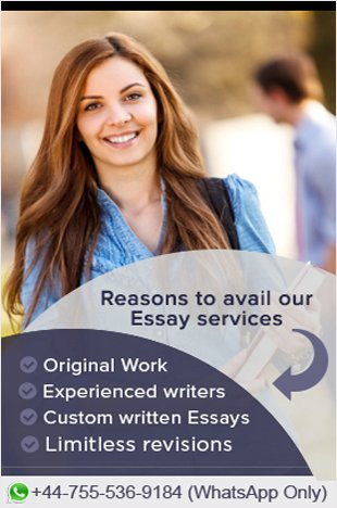 Professional business plan writers in houston