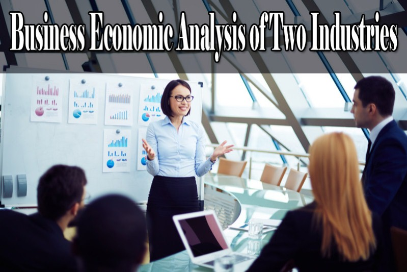 BUSINESS ECONOMIC ANALYSIS OF TWO INDUSTRIES