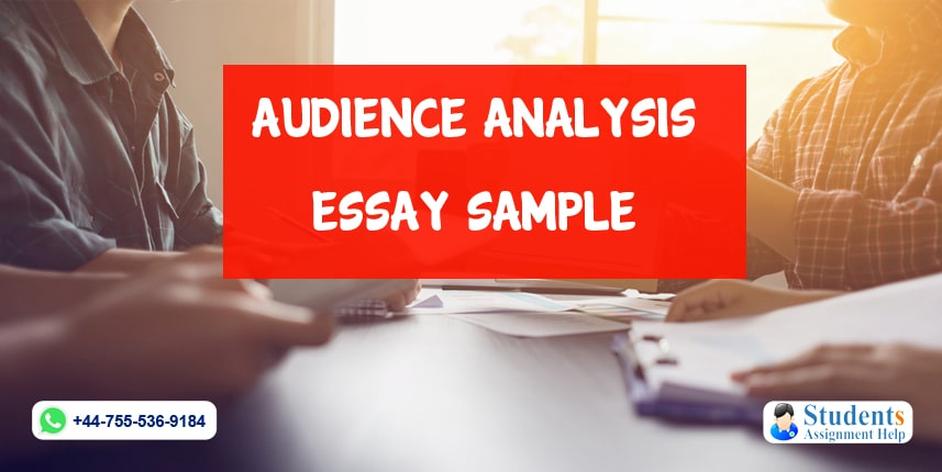 Audience Analysis Essay Sample