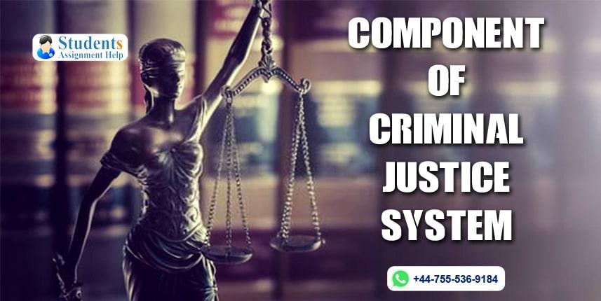 Component Of Criminal Justice System