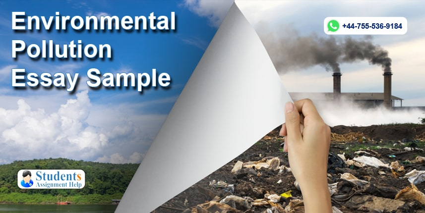 Best 🌱 Environmental Pollution Essay In English