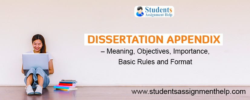 Dissertation Appendix – Meaning, Objectives, Importance, Basic Rules and Format