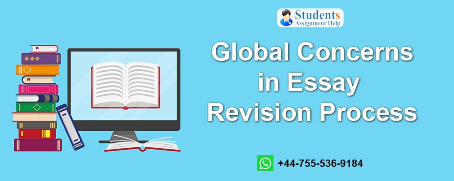 Global Concerns in Essay Revision Process